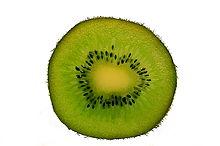 Kiwi1.1